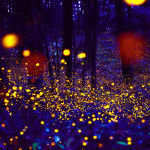 05.-Firefly-image_TH_large